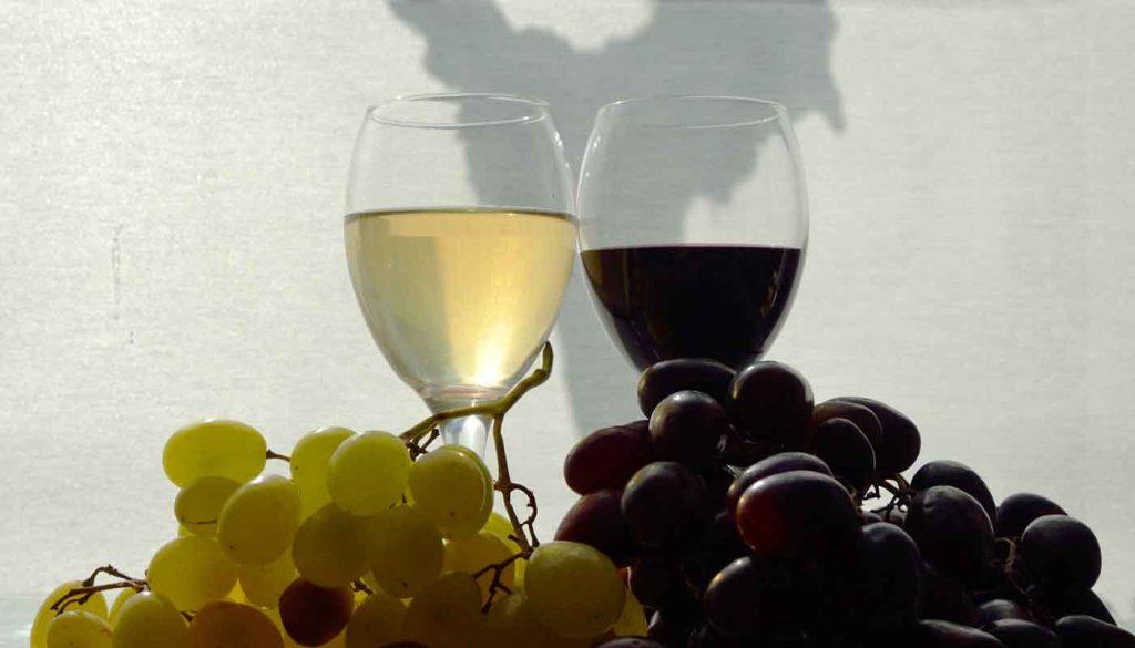 vinos sin alcohol
