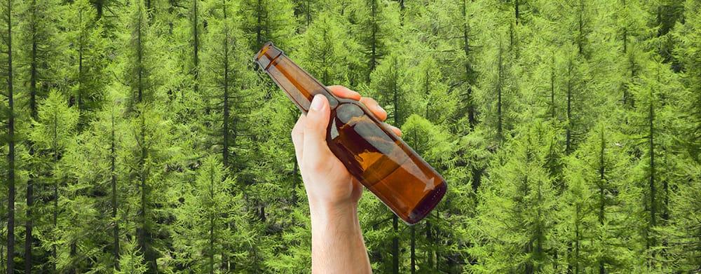 Cada vez que brindas sin alcohol, brota un nuevo árbol